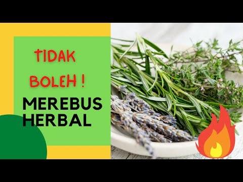 Cara Merebus Tanaman Obat Herbal dengan Tepat