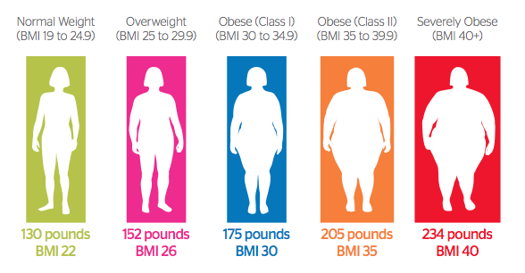 body fat percentage to weight ratio