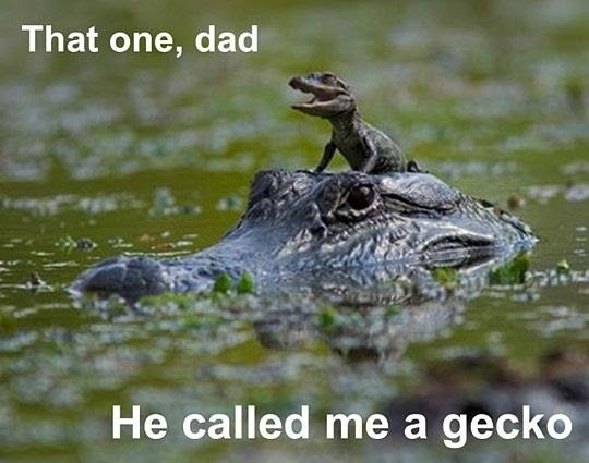 Funny Caption Pics Archives Page 584 Of 612 Everything Funny