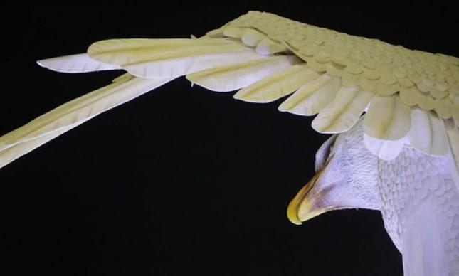 Águia redentora (Foto: Arquivo Google)