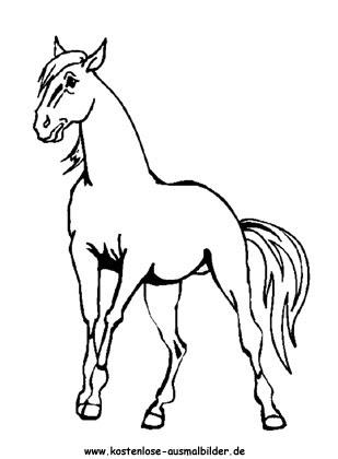 Ausmalbilder Pferd 13 - Tiere zum ausmalen   Malvorlagen ...