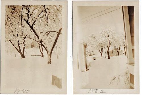 1932 winter trees