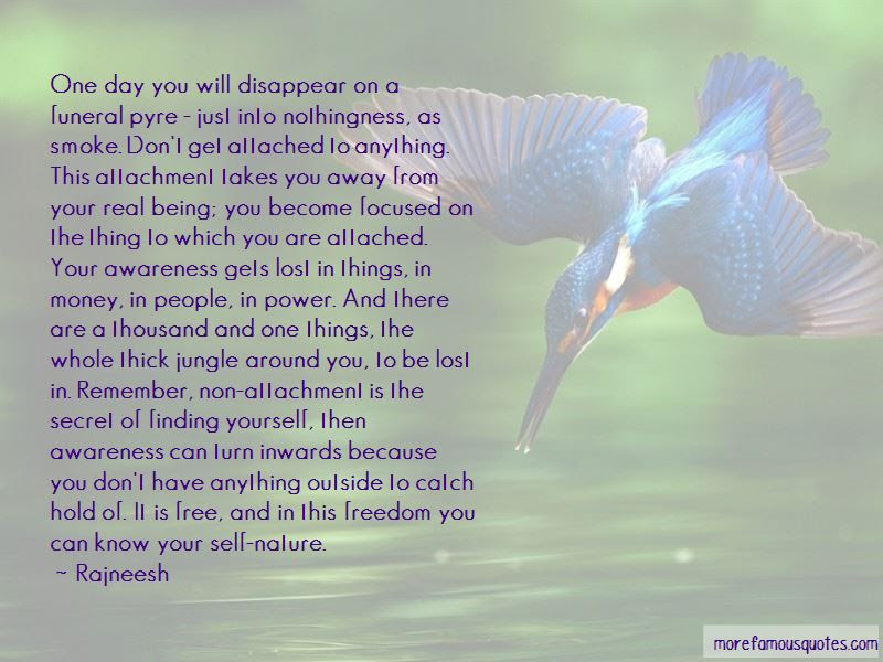 Quotes About Finding Yourself In Nature Top 1 Finding Yourself In