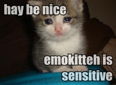 hay be nice, emokitteh is sensitive
