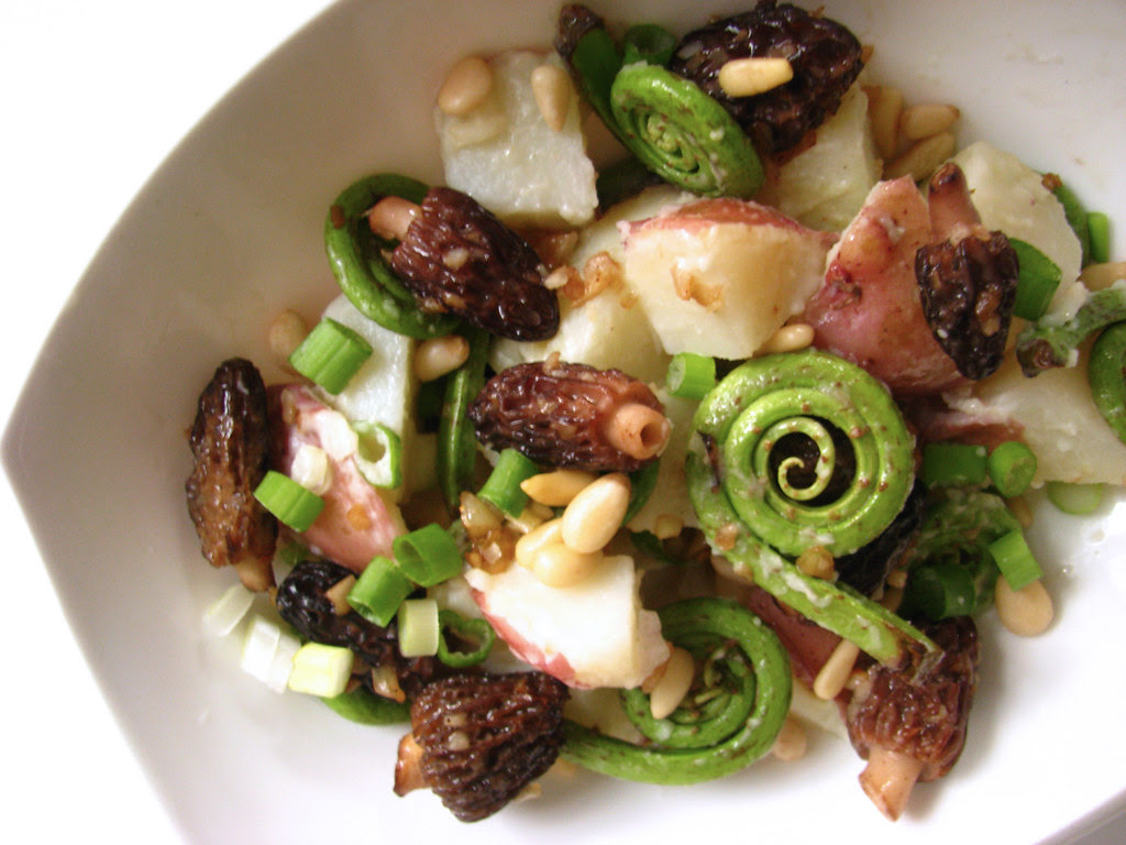 morel & fiddlehead fern salad