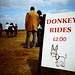Donkey rides by matthbooth