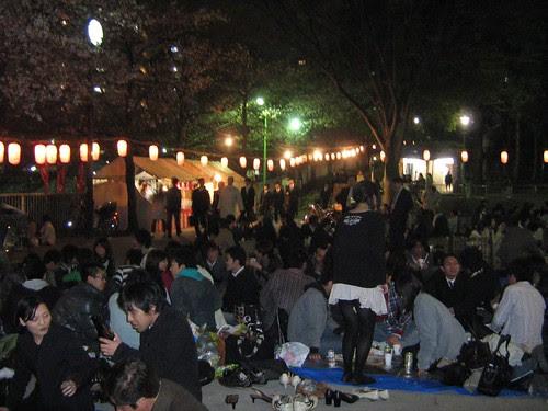 Edogawa Park at Night