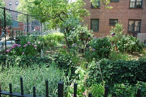Gowanus Community Garden