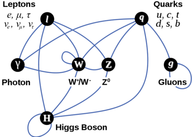 elementary_particle_interactions