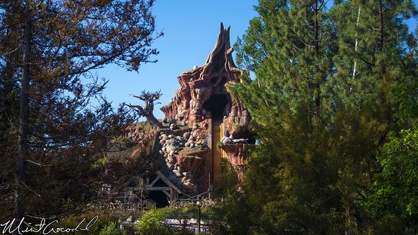 Disneyland Resort, Disneyland, Critter, Country, Refurbishment, Refurb, Refurbish, Splash, Mountain, Hungry, Bear, Restaurant, Winnie, Pooh