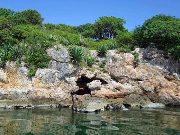 Características de la formación rocosa y de la flora  de Cayo Ají Chico, uno de los que conforman los Cayos de Piedra, formación única de su tipo en el país, ubicada en la Bahía de Buenavista, en la porción correspondiente al Parque Nacional Caguanes, en Sancti Spíritus, Cuba, el 19 de octubre de 2014.    AIN FOTO/Oscar ALFONSO SOSA