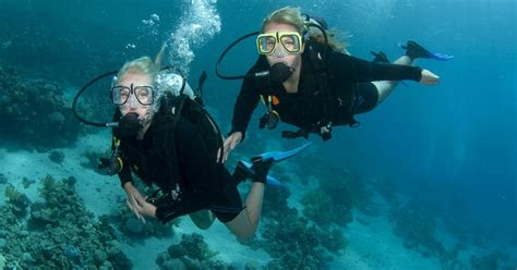 holiday guide  great gifts  scuba divers sport diver