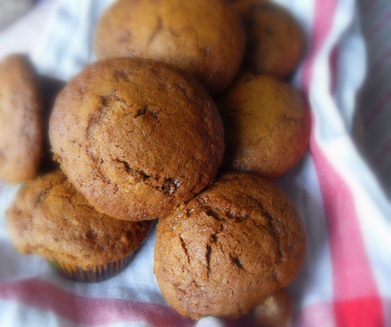 Spicy Gingerbread Muffins
