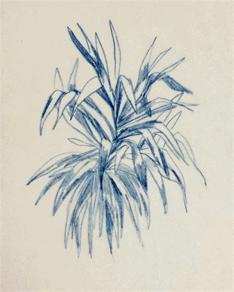 gif drawing art pencil blue nature sketch animated gif