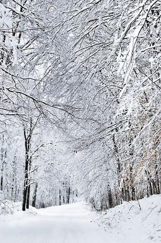 Orillia - Winter Roads 4