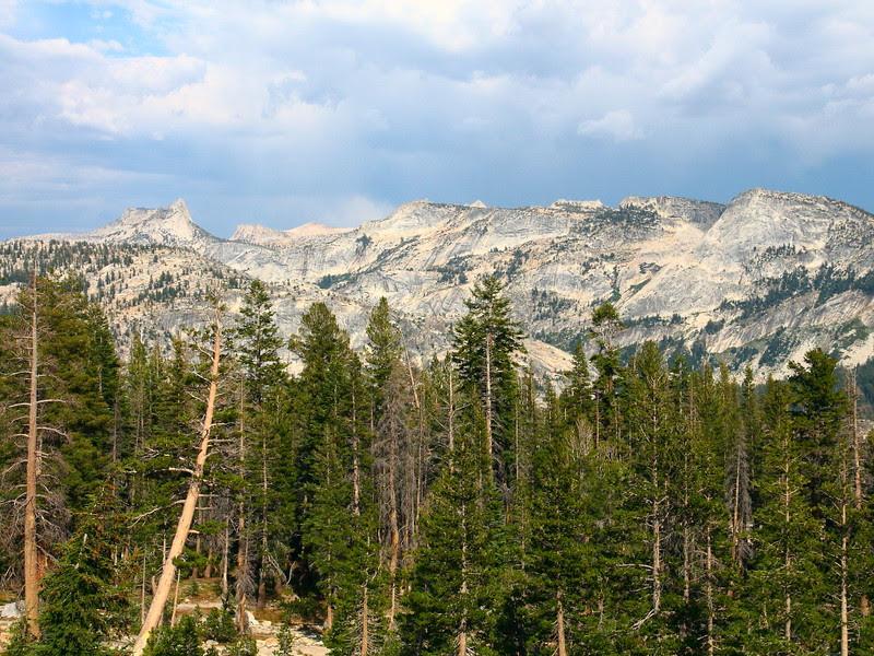 IMG_8643 May Lake Trail
