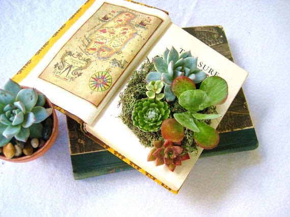 PLANTED Succulent Centerpiece Vintage Book Planter for the Book & Plant Lover PLANTED DESIGN