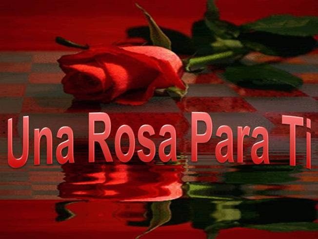 Una Rosa Para Ticelina Authorstream
