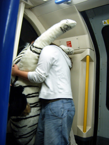 Snogging Tiger