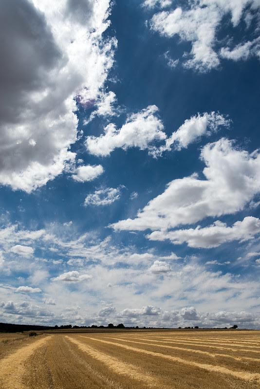 Desde Cedillo, este cielo
