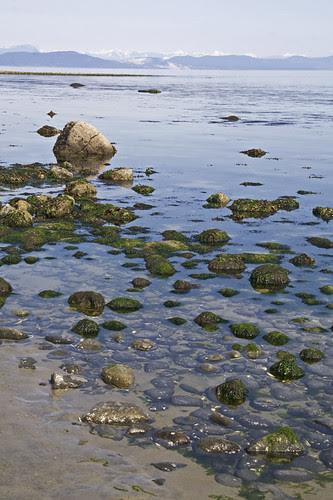 low low tide