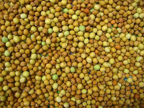 peas shelled