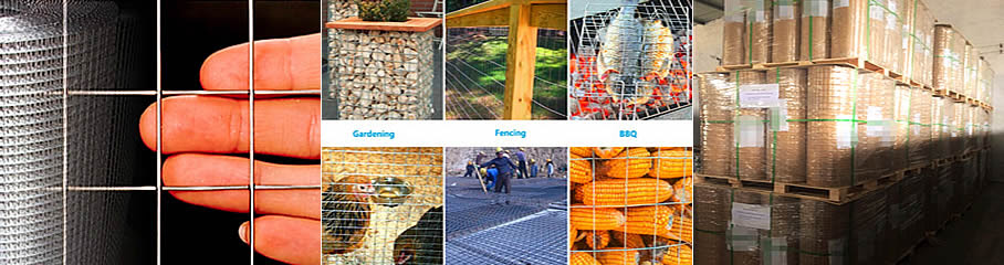 Welded Wire Mesh Dingzhou Orient Hardware Products Company Co Ltd