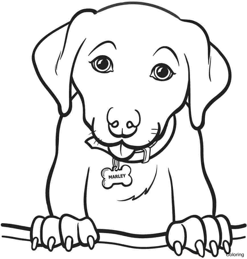 Simple Dog Coloring Pages at GetColorings.com | Free ...