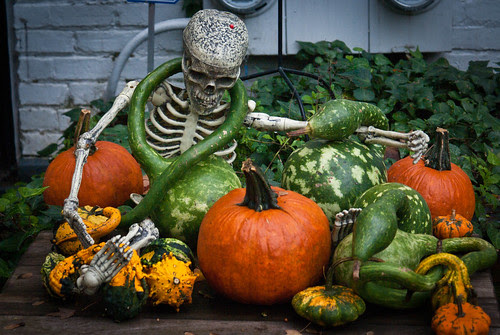 Halloween Decor on Capitol Hill - 900 Block of C Street SE by caroline.angelo