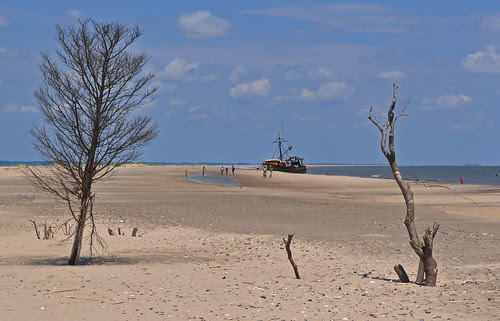 Cedar Island (11)