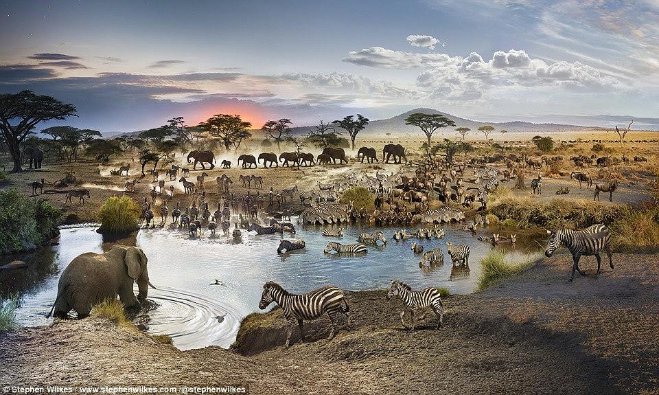 Serengeti National Park en Tanzanie