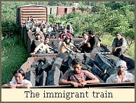 The immigrant train