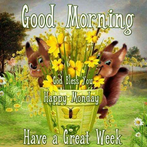 Good Morning God Bless You Happy Monday Pictures Photos And