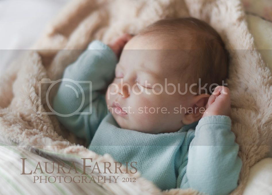 boise newborn baby photography