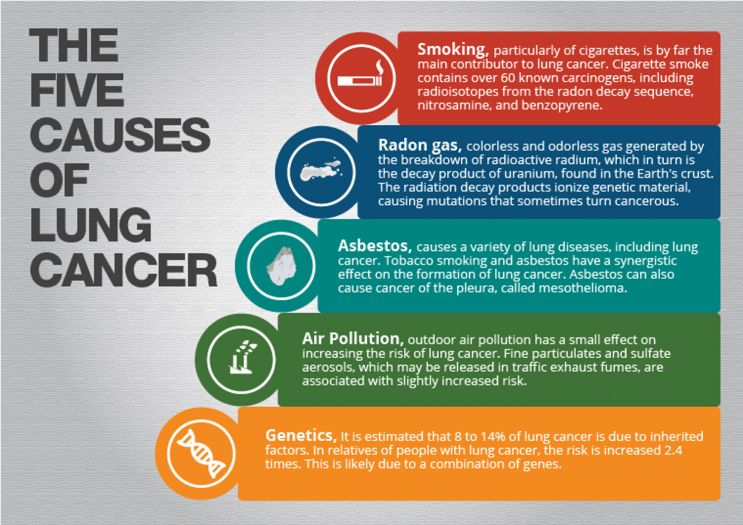 Lung Cancer Causes Infographic