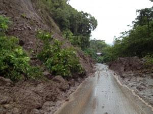 La caída de varios árboles y parte del tendido eléctrico en la Ruta 239 que comunica San José con Puriscal, ha provocado el cierre momentáneo de la vía.