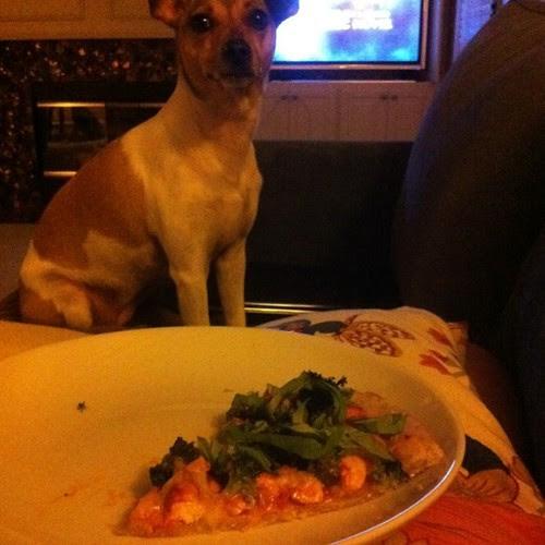 Pizza Guard