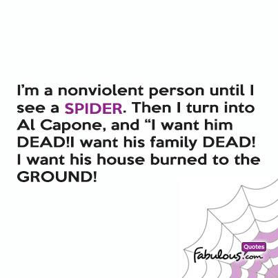Im A Nonviolent Person Until I See A Spider Then I Turn Into Al