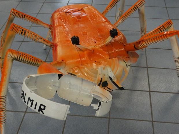 Carangueijo feito de metal por Valmir Reginaldo (Foto: Paula Cavalcante/ G1)