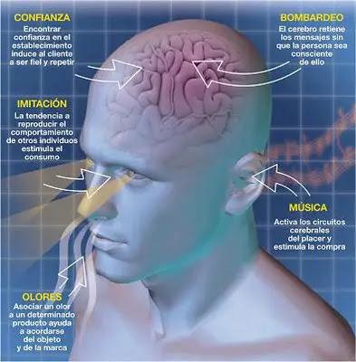Resultado de imagem para Neuropsicología