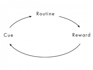 Charles Duhigg Habit Loop