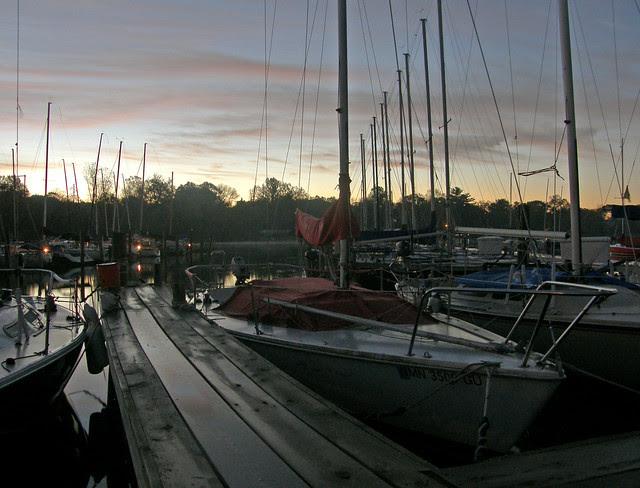 the dark marina
