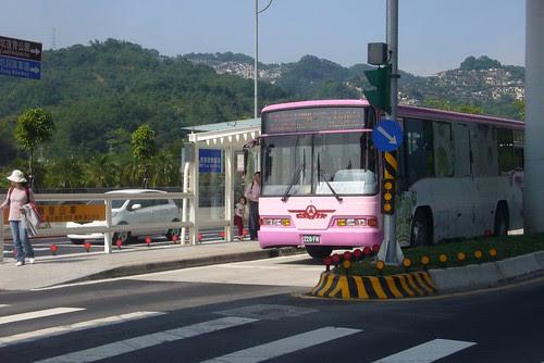動物園公車專用道