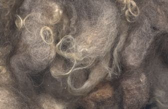 A sample of a fawn fleece.