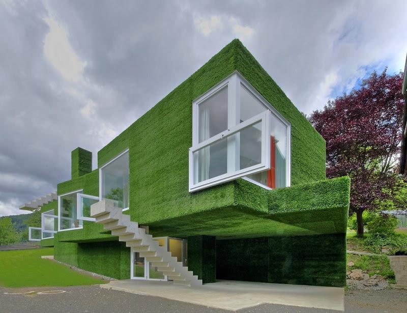 Необычный зеленый дом в Австрии. Фото