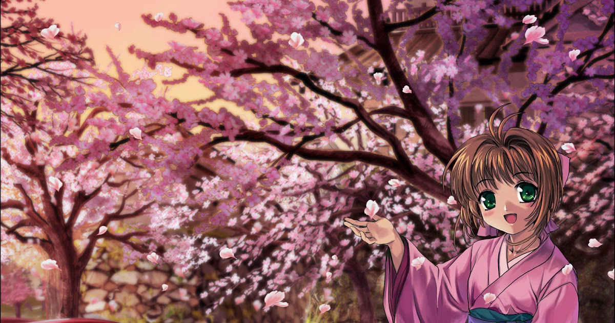 21+ Wallpaper Bunga Sakura Pohon - Rona Wallpaper