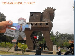 Troy_Turkey-Flat Stanley