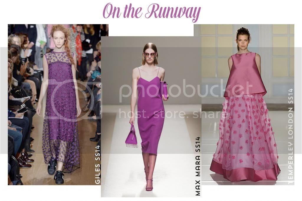 SPRING SS 2014 TREND REPORT: Radiant Orchid
