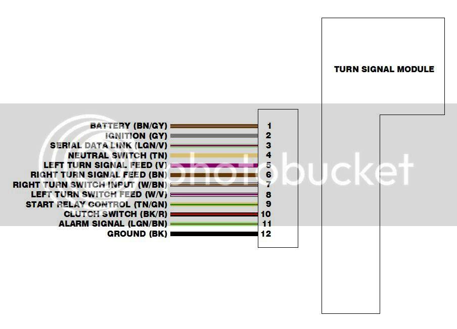 1999 Sportster 1200 Wiring Diagram