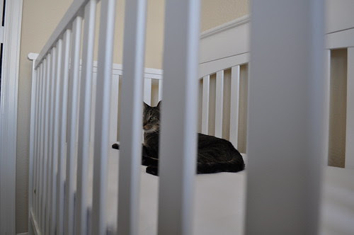 i knew putting a sheet on the crib was a mistake
